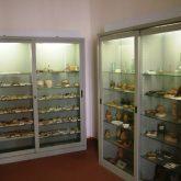 reperti-e-fossili-madoniti